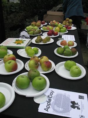 Display of apple varieties at Apple Day