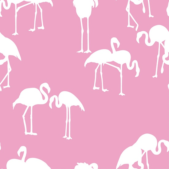 Fabulous Flamingo Wallpaper - The Glam Pad on decorating with giraffes, decorating with chickens, decorating with palm trees, decorating with penguins, decorating with horses, decorating with amazing grace,