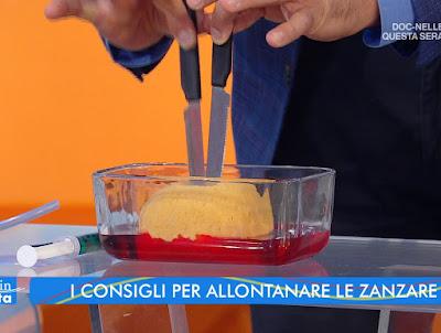 Valerio Rossi Albertini bocca di una zanzara da vicino estate in Diretta