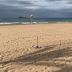 La playa de Benidorm ya luce parcelada
