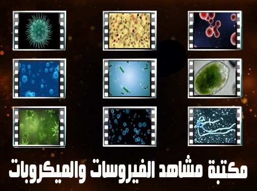 Microbes and Viruses and Bacteria and Cells