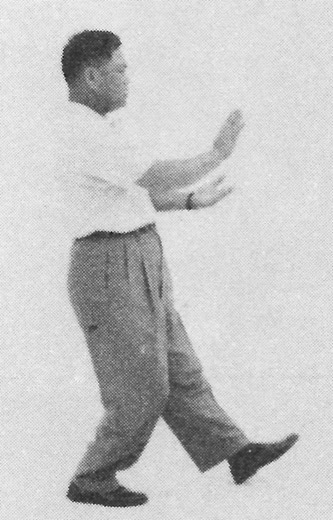 Tai Chi Chuan (Square Form) 48. Step Up And Pat The Horse High (Left)
