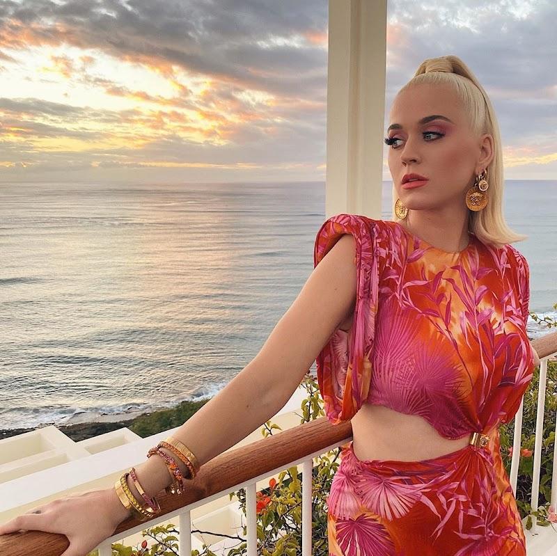 Katy Perry Instagram  Snaps- Feb 2020