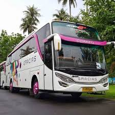 Kumpulan Tautan Informasi Seputar Bus Pariwisata