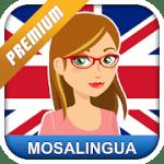 Aprender inglés rapidamente con MosaLingua 10.41