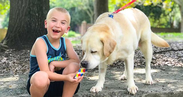 Ребенок года: 7-летний Роман спас уже более 1300 собак!
