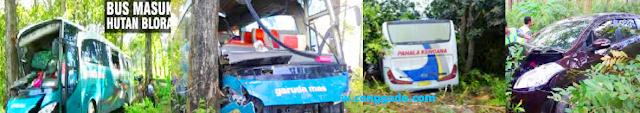 Bus mobil dan truk masuk hutan alas purwo blora