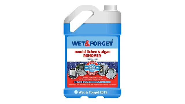 Wet & Forget Patio Cleaner