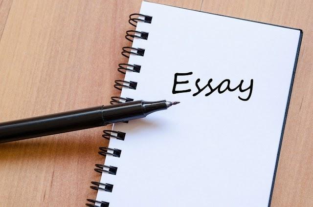 Human Rights Law Essay Help