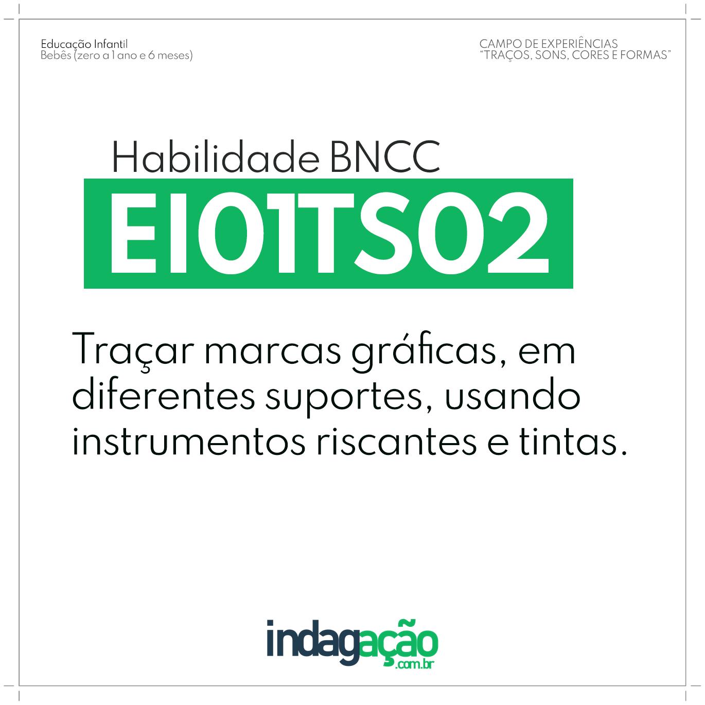 Habilidade EI01TS02 BNCC