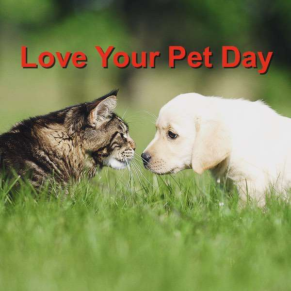 National Love Your Pet Day Wishes Sweet Images