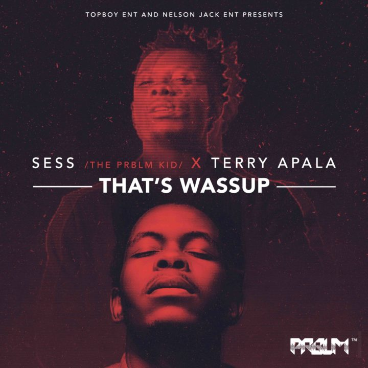 thats-wassup-mp3-sess-terry-apala