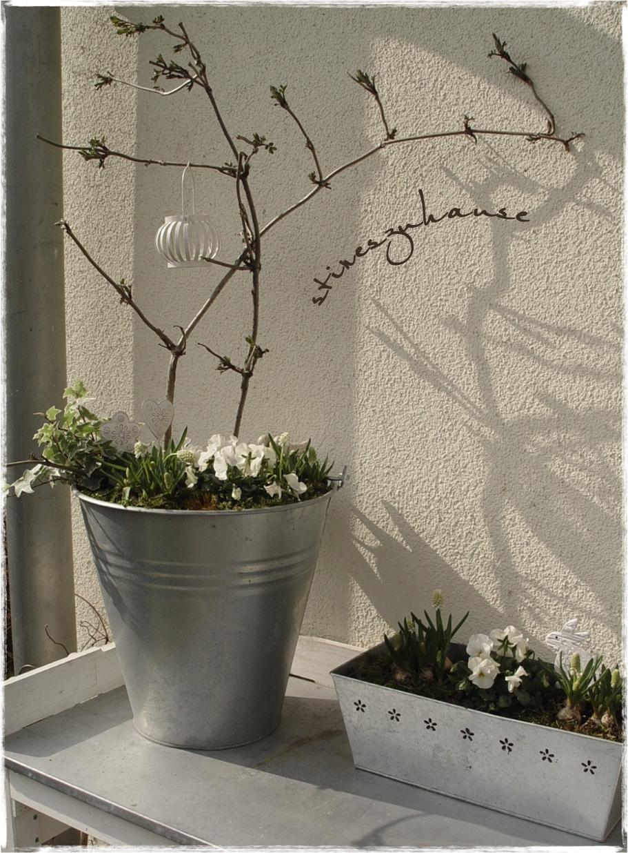 stineszuhause: her mit dem Frühling... zerbrochene Vogeltränke ...