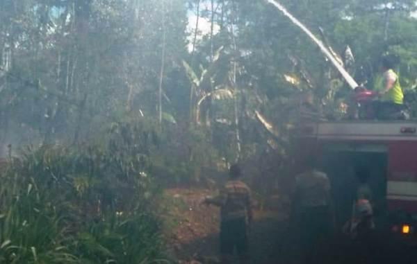 Konsleting Listrik, Kandang Ayam di Gunungwungkal Ludes Terbakar Saat Ditinggal Nyoblos