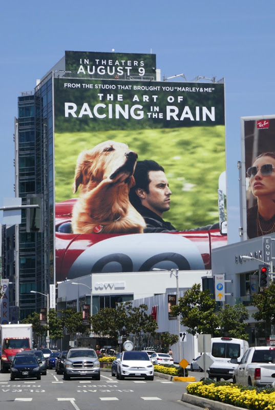 Art of Racing in Rain movie billboard