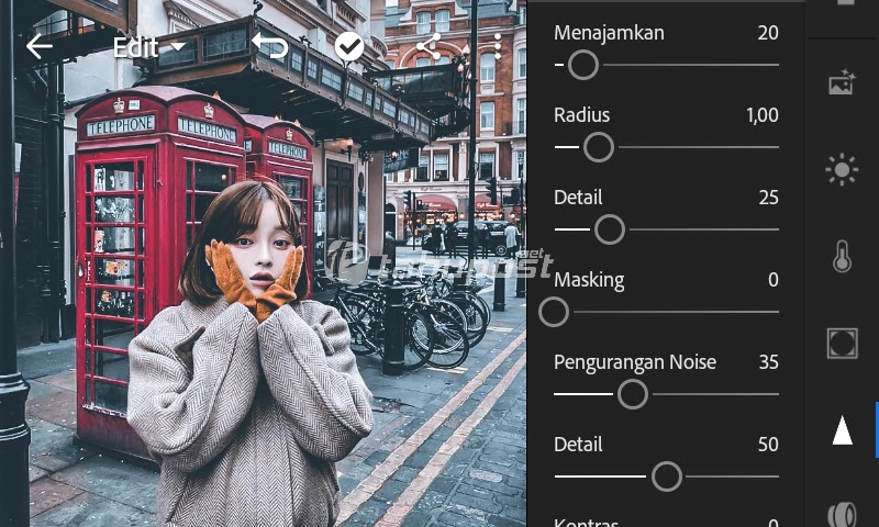 Pengaturan menu detail untuk rumus lightroom urbex di lightroom mobile android