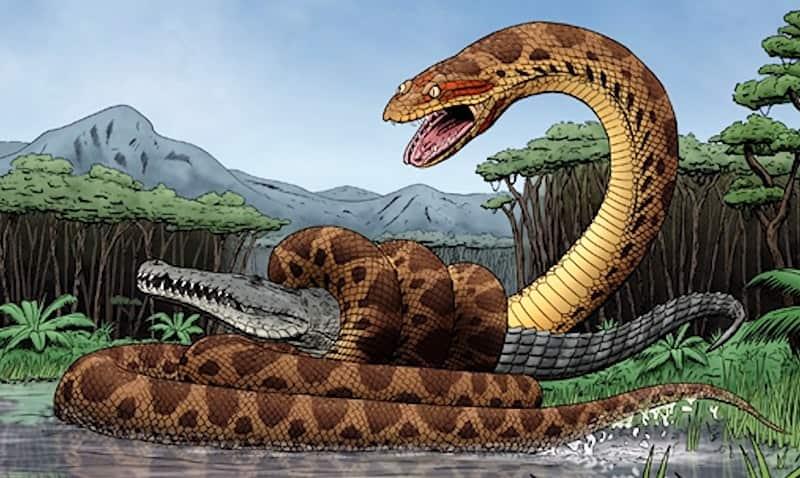 Titanoboa:Monster Snake - the 43-feet-Long | the largest Snake Ever Discovered