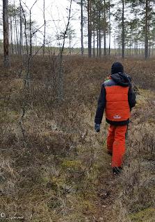Kotojärvi Mäntsälä