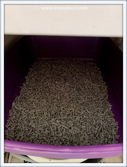Top Tips For Cat Pawrents ©BionicBasil® Litter Trays Ready To Use