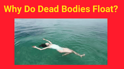 Why Do Dead Bodies Float?