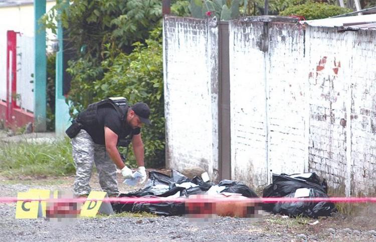 Macabra carnicería fue localizada en Ixtaczoquitlán, sicarios destazan a 4 sujetos y los abandonan en 12 bolsas en Veracruz