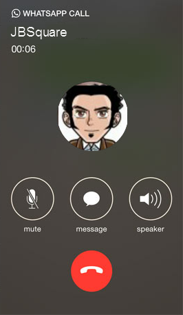 WhatsApp Voice Calling On iPhone