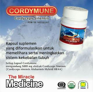 Paket Obat Stroke Cordymune Nasa