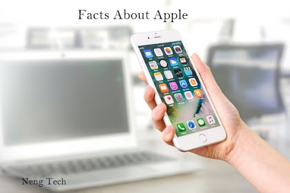 Facts About Apple