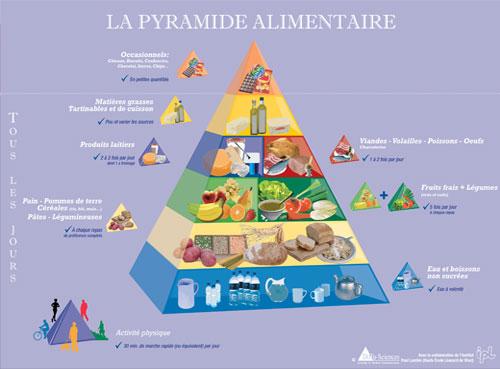 Pirámide alimentaria belga
