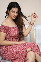 Diksha Panth in a Deep neck Short dress at Maya Mall pre release function ~ Celebrities Exclusive Galleries 049.JPG
