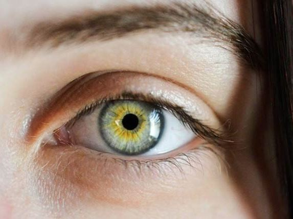 Uncovering The Relationship Between The Pupil Of The Eye And Intelligence