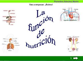 http://cplosangeles.juntaextremadura.net/web/edilim/tercer_ciclo/cmedio/las_funciones_vitales/la_funcion_de_nutricion/