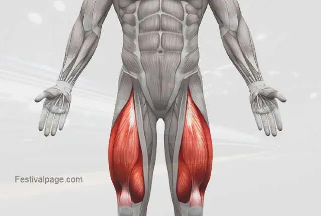 5 best exercises to strengthen legs image