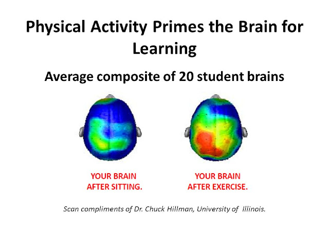 Advantages of Physical Education on Studies (It Improves Brain performance)