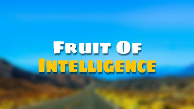 Fruit Of Intelligence