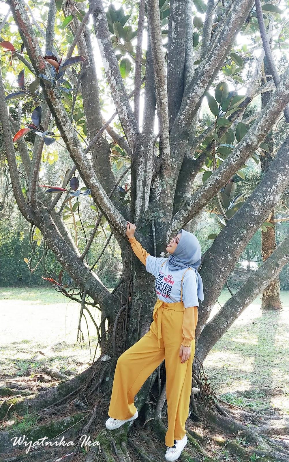 Menikmati 'ME TIME' Diantara Rindang Pepohonan di Cianjur, Jawa Barat