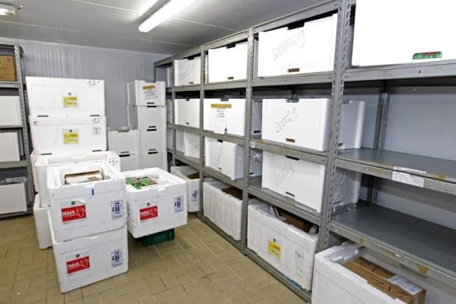 Cerca de 180 mil baianos serão imunizados contra a Covid-19 nesta primeira fase