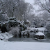 Comment entretenir son jardin en hiver ?