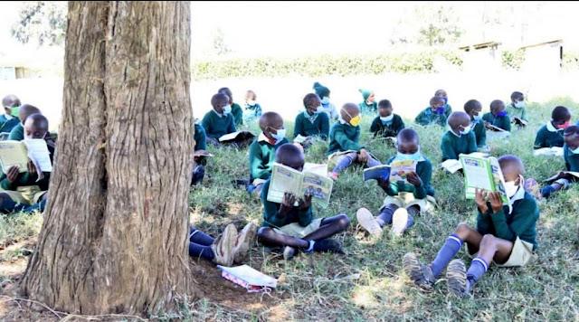 Mweiga Primary School in Nyeri