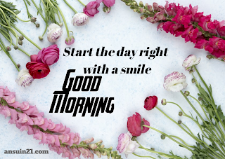 Best Good Morning HD Images, Wishes, Status HD Wallpaper for whatsaap free download,