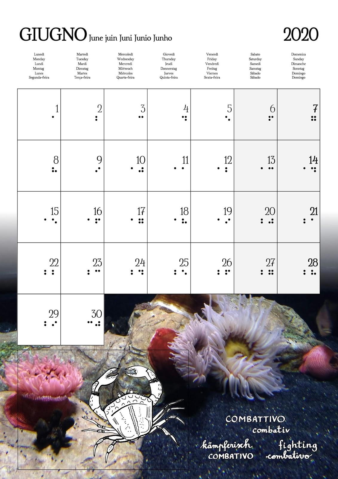 Calendario Agosto 2020 Da Stampare.Voglio Una Mela Blu