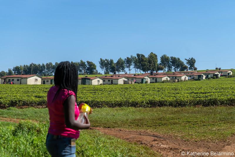 Lydia and Tea Village Volunteering in Kenya with Freedom Global