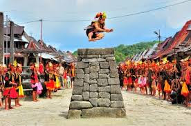 http://traveling-toindonesia.blogspot.co.id/2016/02/tourism-and-travel-in-nias.html