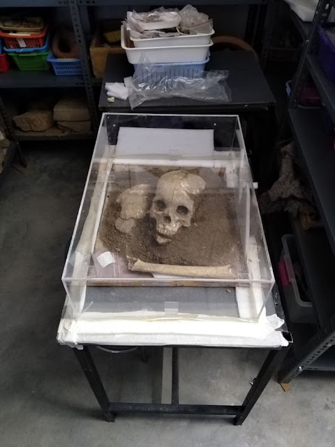 3,500-year-old skull found in Hittite city of Sapinuwa