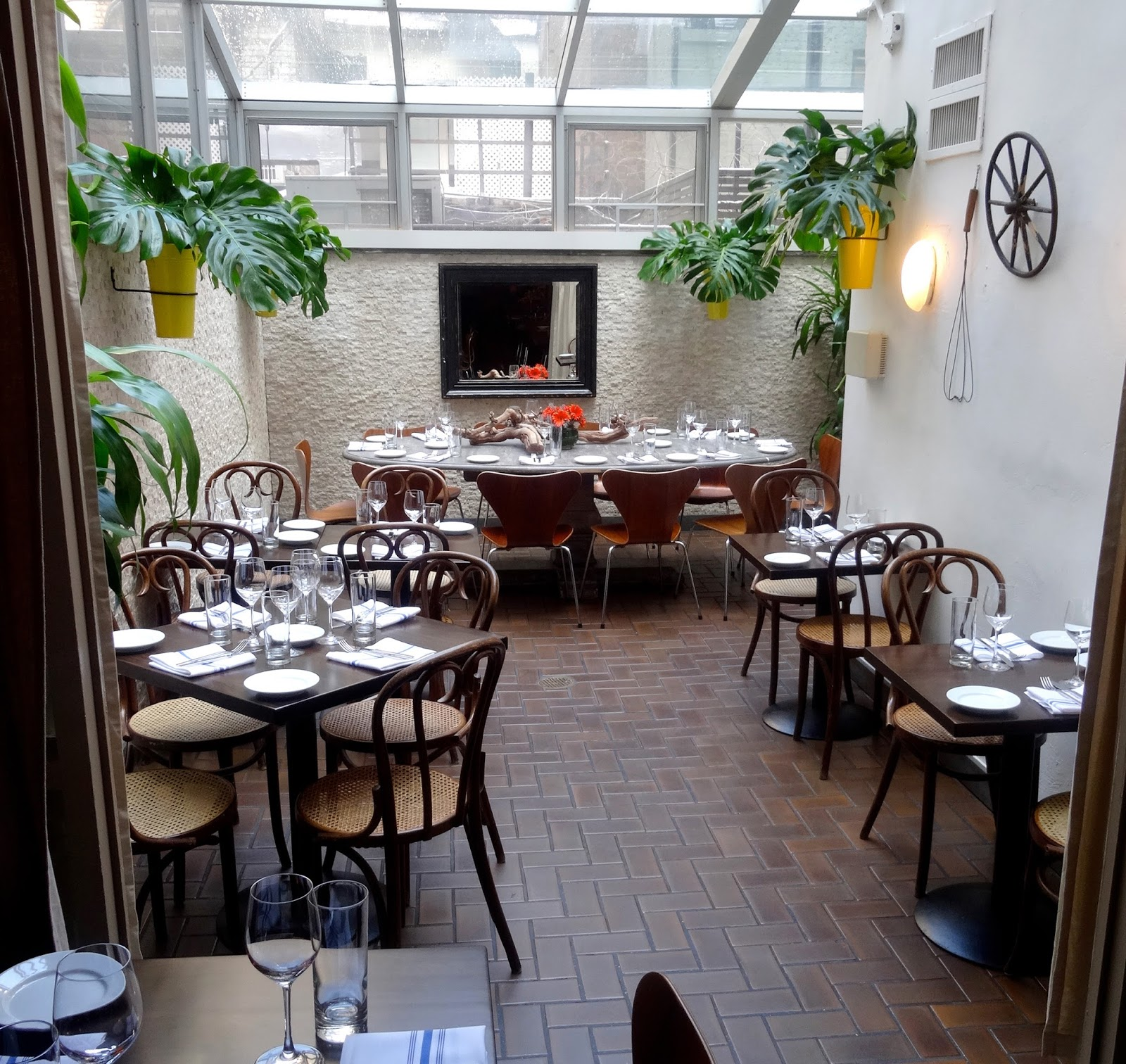 lyra mag.: mozzarella e vino casual italian food-restaurant review