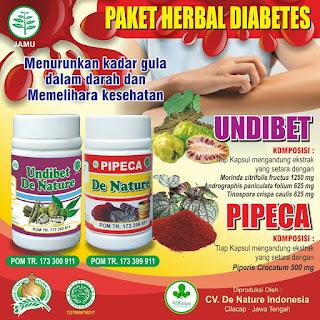 OBAT DIABETES HERBAL DE NATURE INDONESIA
