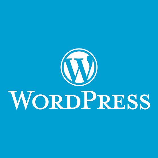 Theme Customize not Updated on Your Site WordPress