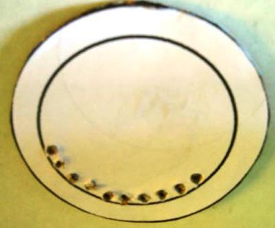 base plate kardus dilubang