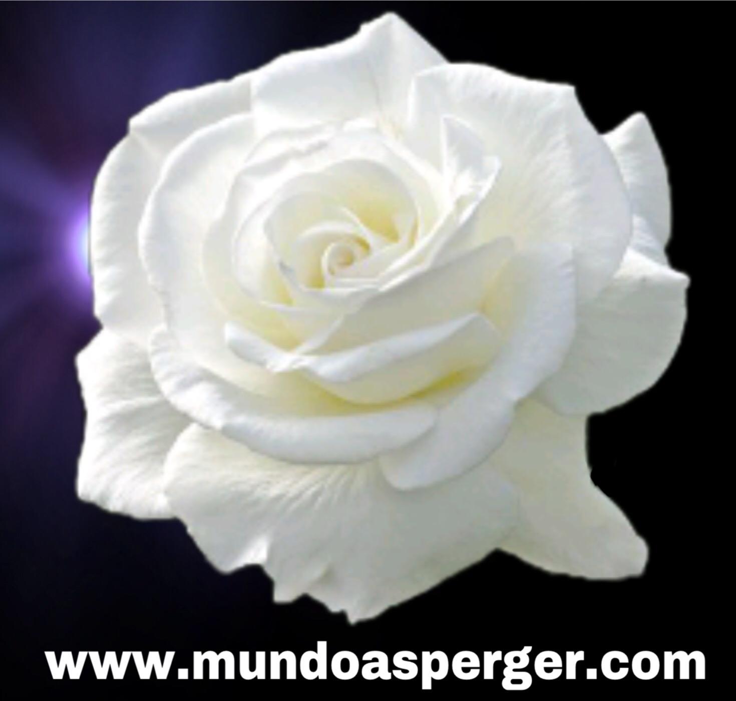 MuNDo AsPeRGeR: diciembre 2010