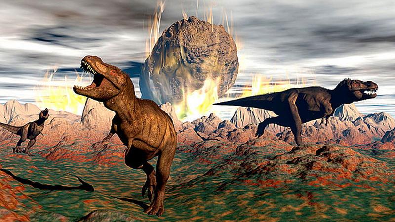 ilmuwan ungkap asal usul kepunahan dinosaurus Th5h8K86P5 - Tahukah Kamu Ada Teori Evolusi Pertama Dari Seorang Muslim, 600 Tahun Sebelum Darwin